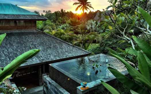 Blue Karma Secrets Ubud - Indonesia | Charme & Caractere Luxury