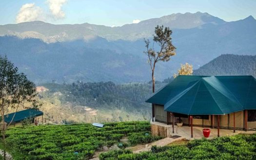 Madulkelle Tea - Eco Lodge - Sri Lanka | Charme & Caractere Luxury